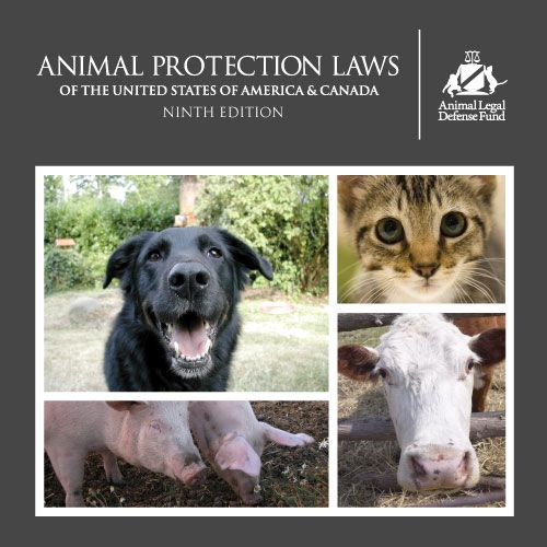 This is the must-have resource for anyone who wants the most comprehensive animal protection laws of the United States of America and Canada. How does your state measure up? Is it time to contact your congressman?