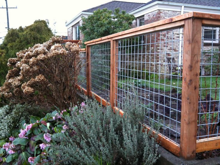 """APS: We have a fence just like this.  We love it and get lots of compliments.  the wire panels are available at your local Tractor Supply.  We used what is called as 'Hog Panels""""  16'x4'"""