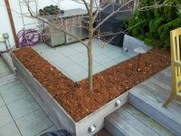 Fall Garden and Irrigation System Service NYC by New York Plantings Irrigation  333 E 14 st   box 1229  Manhattan, NY 10009  646-434-8049     Site url:     http://www.newyorkplantings.com/Irrigation.html