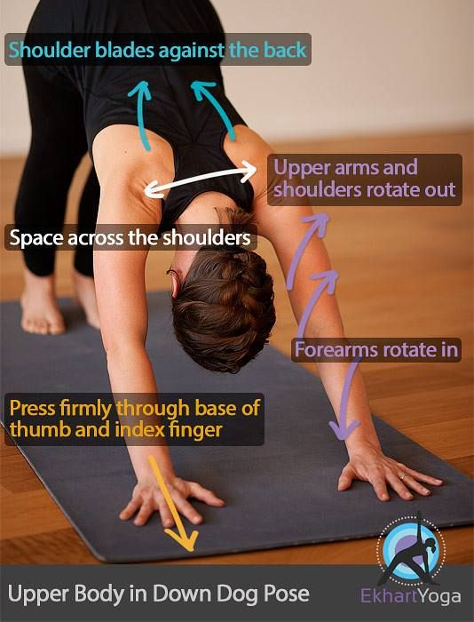 Down dog pose alignment cues.