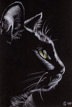 White Charcoal On Black Paper Drawing By Kelseyknobel More