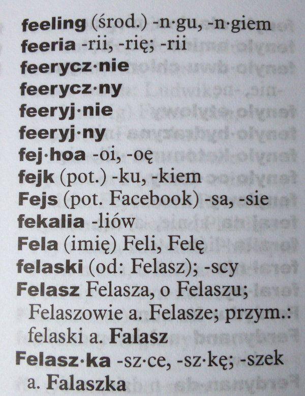 """Anna Iwanowska na Twitterze: """"3000 nowych haseł, w tym: Fejs (pot.), tweet, hejt (pot.) - nowy Wielki słownik ortograficzny. https://t.co/zJjt1MThY6"""""""