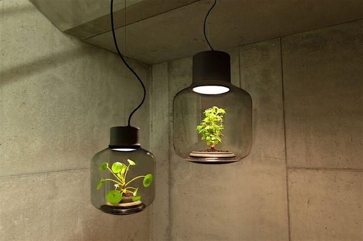 Das deutsche Designerstudio We Love Eames hat mit Mygdal eine autonome Pflanzenlampe entworfen. Die Hänge- oder Stehlampen bestehen aus einem grossen Glaskörper, in dem sich neben einer Lichtquelle auch die Grünpflanze befindet. Da sich innerhalb des Glases ein eigenes Ökosystem bildet, muss die Pflanze nicht gegossen werden. Das liegt daran, dass das Licht der LED-Lampe [ ]