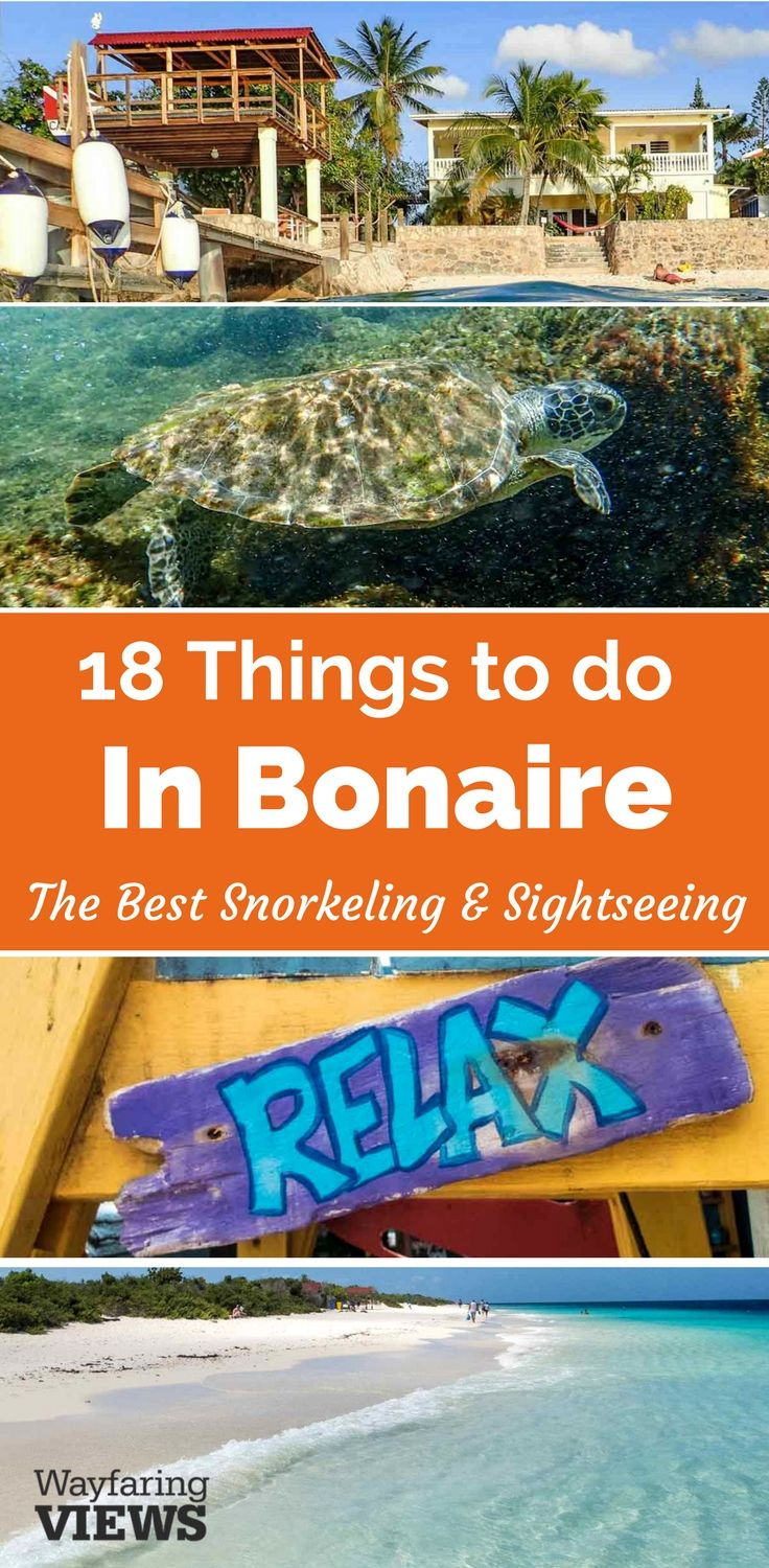 These top things to do in Bonaire will fill a five day travel itinerary with snorkeling and sightseeing. | See Kralendijyk, salt ponds, windsurfing, beautiful beaches, flamingos and more.