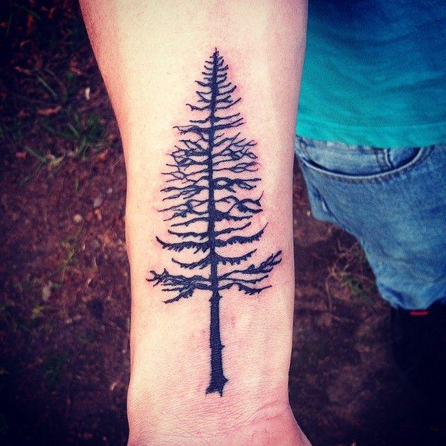 1000 ideas about maple tree tattoos on pinterest for Pine tree tattoo ideas