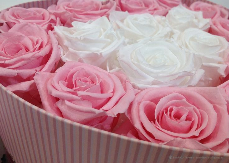 Розы которые никогда не завянут. Стабилизированные розы в коробке.  Коробка в форме сердца. Прекрасный подарок. Онлайн заказ. Доставка.