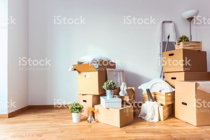 Move. Cardboard boxes and cleaning things for moving into a new home royalty-free stock photo