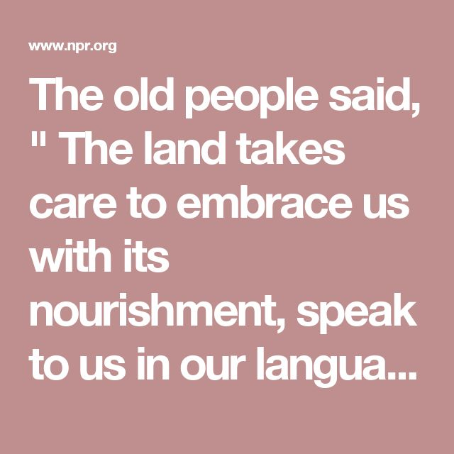 "The old people said, "" The land takes care to embrace us with its nourishment, speak to us in our language, give us stories to educate us, and listen to the songs of beauty we sing in it's honor.""  --Otis Parrish, Kashaya Pomo elder"