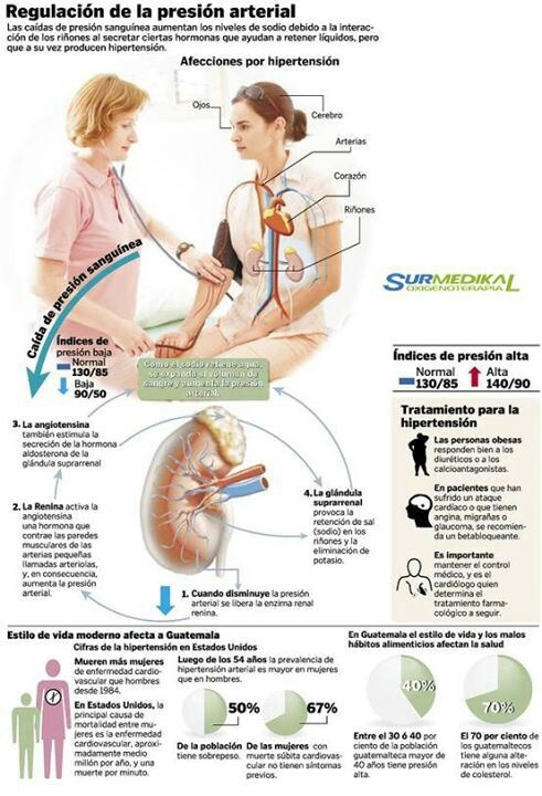 16 best images about Hipertension/ presión alta. on..
