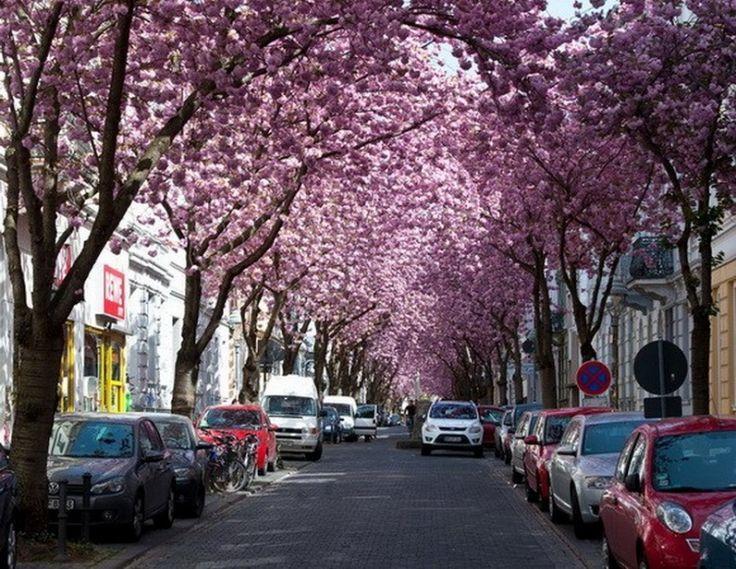 Bonn, Allemagne