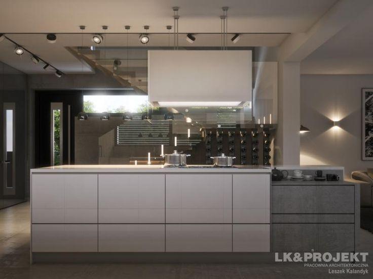 LK&1302 - http://lk-projekt.pl/lkand1302-produkt-9625.html  #project #houseproject #house #modern #architecture #polisharchitecture #homesweethome #singlefamilyhouse #exterior #build #dreamhome #dreamhouse #design #villa #residence #kitchen