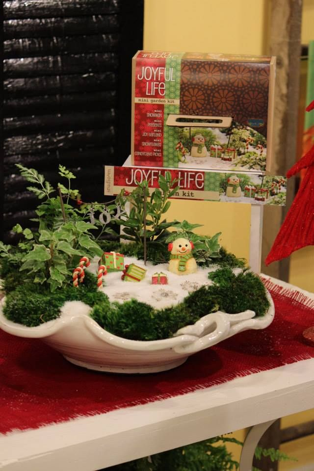 miniature fairy garden joyful life mini garden kit my fairy gardens. beautiful ideas. Home Design Ideas
