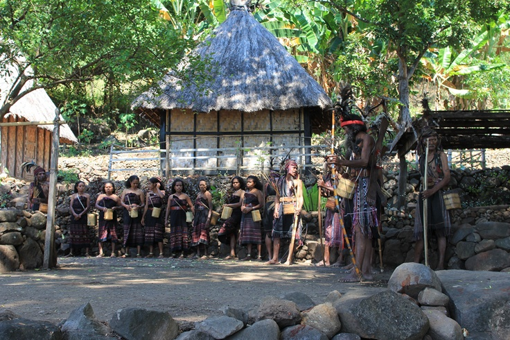 The Abui people are posing in front of a traditional house. In Takpala Village, there are dozens of fine pyramid-roofed traditional houses of this kind called lopo. The traditional house looks so simple yet beautiful. There are two kinds of lopo, namely kolwat and kanuruat. Kolwat is a house open for public; anyone can enter the house including children and women. Meanwhile, kanuruat is only accessible for certain people.