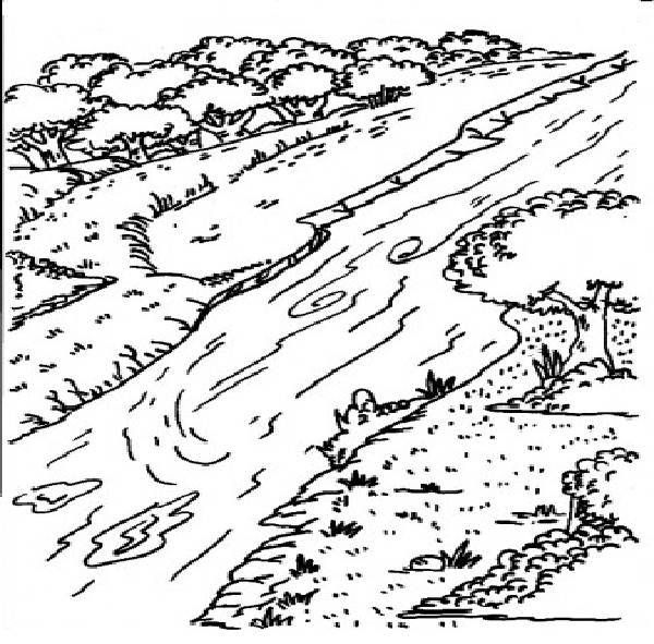 L29 Nile River Coloring Pages For Kids (With images