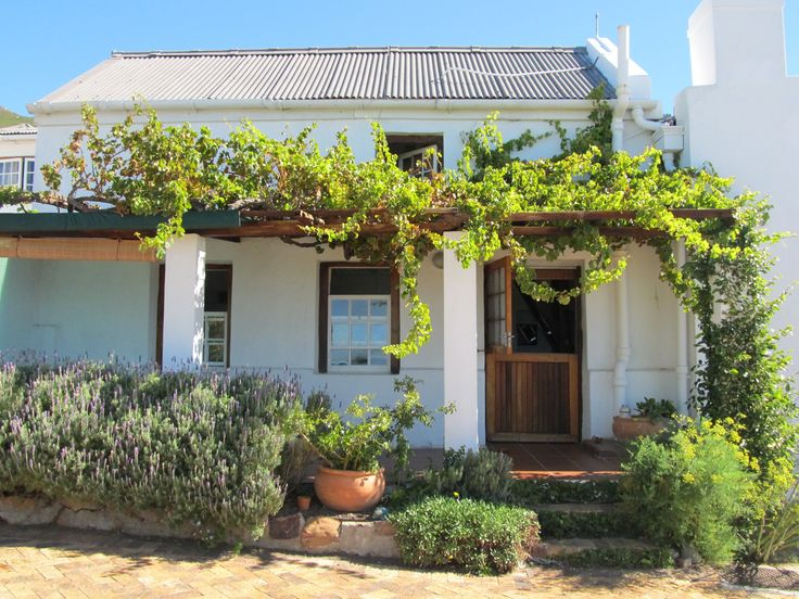 Self catering accommodation, Simonstown, Cape Town   View of the Grapevine Cottage   http://www.pinterest.com/capepointroute/bosky-dell/