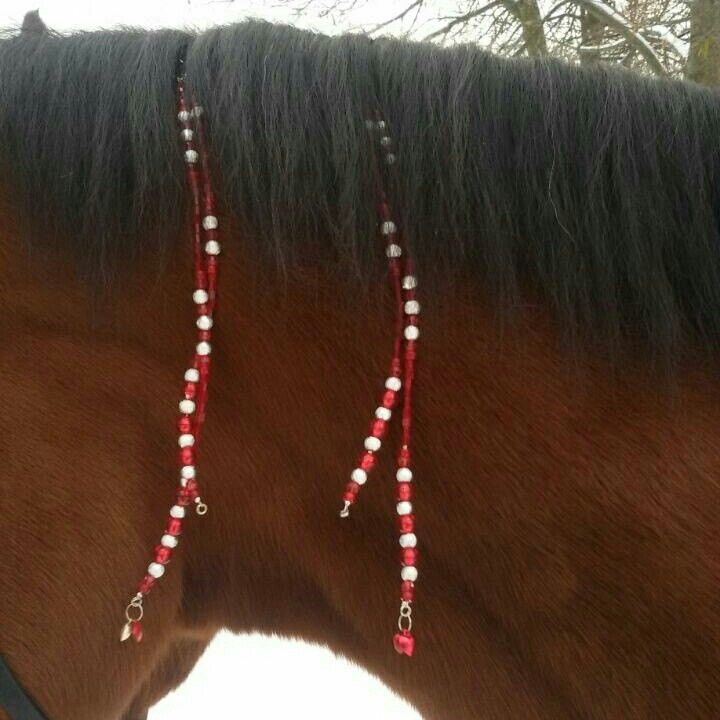 Red Valentines mane ornaments for horse