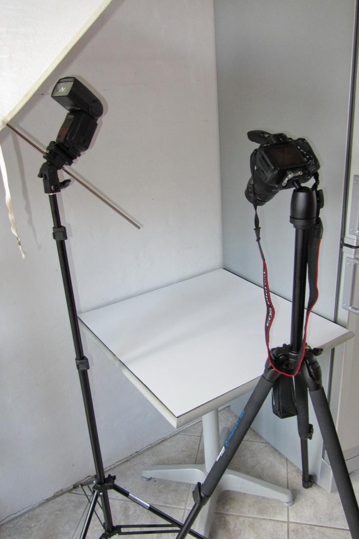 неприхотливое растение совет комплект для домашней фотостудии спрос стимулирует