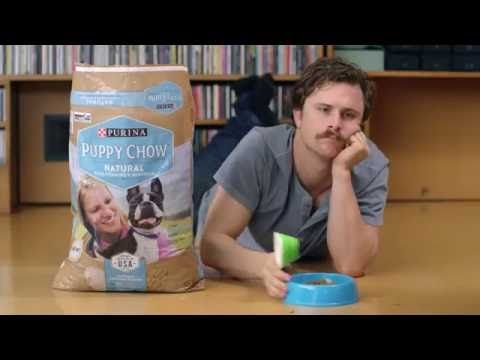 Back to Work Means Bring Your Dog to Work | Purina® Puppy Chow® - YouTube