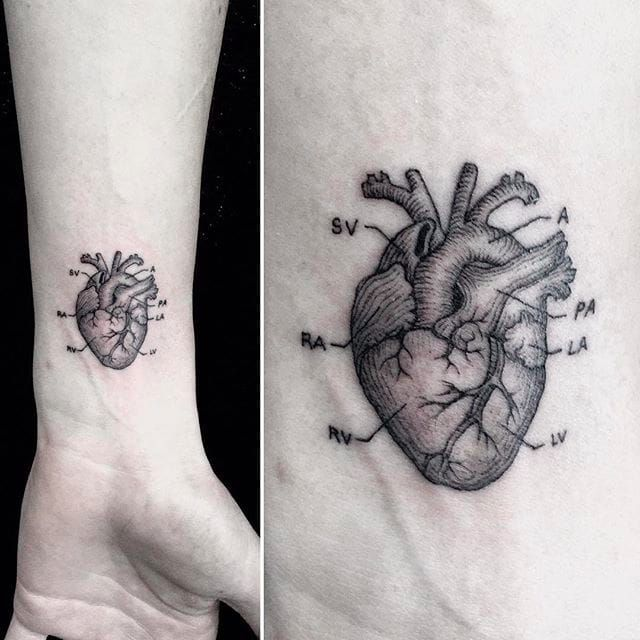 Black and Grey Anatomical Heart by Mr.K / Sanghyuk Ko @mr.k_tats BlackandGrey heart anatomy singleneedle micro mr.k sanghyukko
