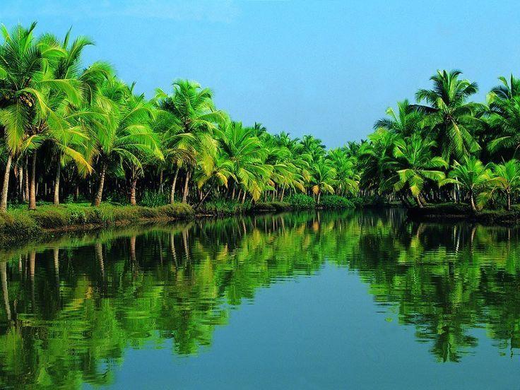 Alleppey Houseboats Charming Kerala Backwaters In 2020 Best Island Vacation Fiji Travel Vietnam Travel