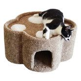 """Found it at Wayfair - 14"""" Paw Print Contemporary Cat Condo"""