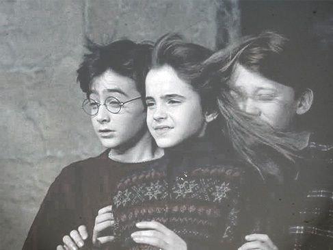 harry ron and hermione meet fluffy