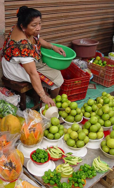 En Chile había muchos mercados. Yo compre muchos frutas desde los vendedores.