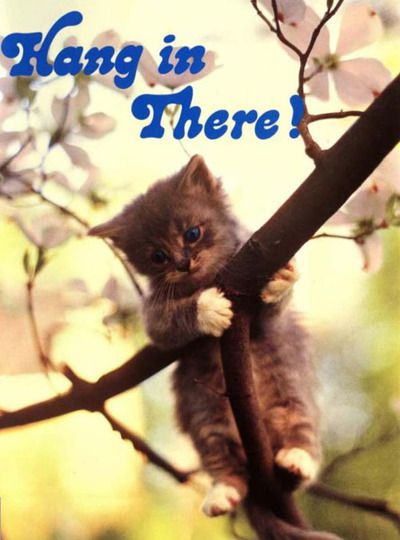 """80s """"Hang in There"""" kitten poster http://www.liketotally80s.com/2014/10/80s-posters/"""