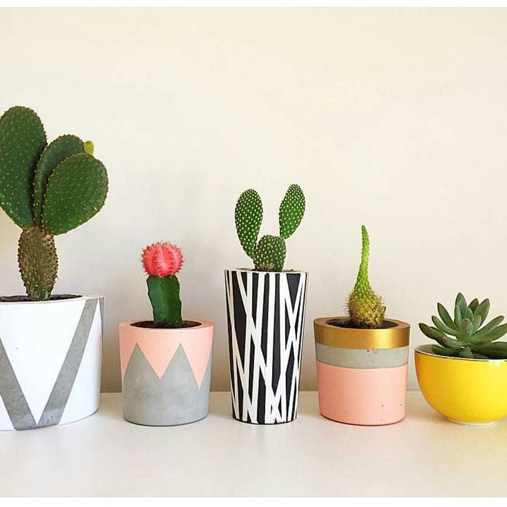 Concrete Succulent Holders  Instead of using paint to decorate you could use chalk maybe