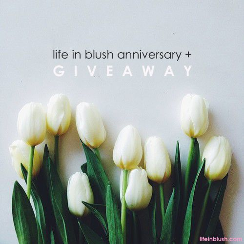 want to win your very own bundle of Josh Rosebrook Skin and Hair Care products?! All you have to do is enter the life in blush anniversary giveaway before April 9th - GO!