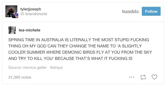 """This petition to rename """"spring"""". 
