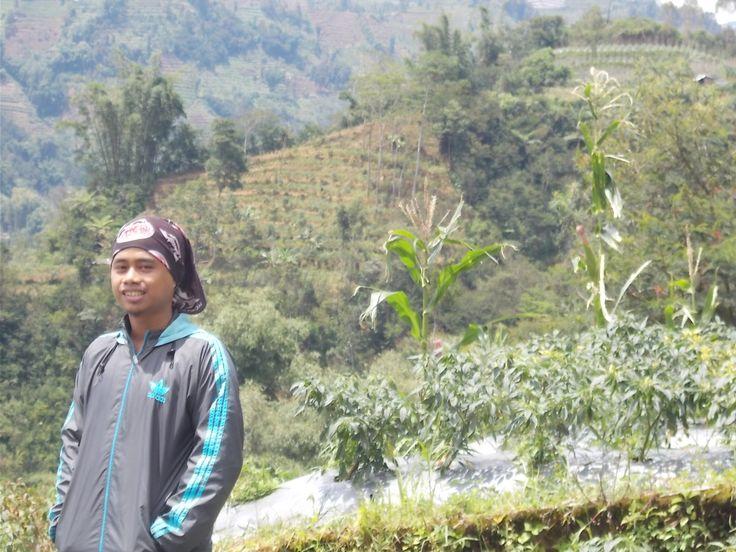 Pada saat Survey Mini audit Jawa tengah.. di sempatkan foto karna pemandanganya mengigatkanku dengan kampung halaman di sulawesi selatan.