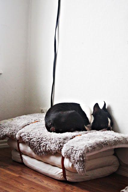 #DIY Un matelas, une peau de mouton, un ceinture... et vous obtenez un lit douillet pour votre chien ou votre chat.