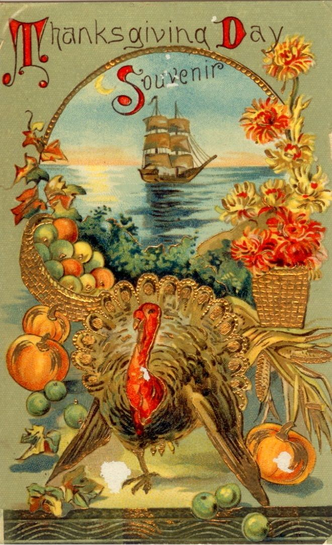 Turkey Day Hercules Style: 74 Best Let's Talk Turkey Images On Pinterest