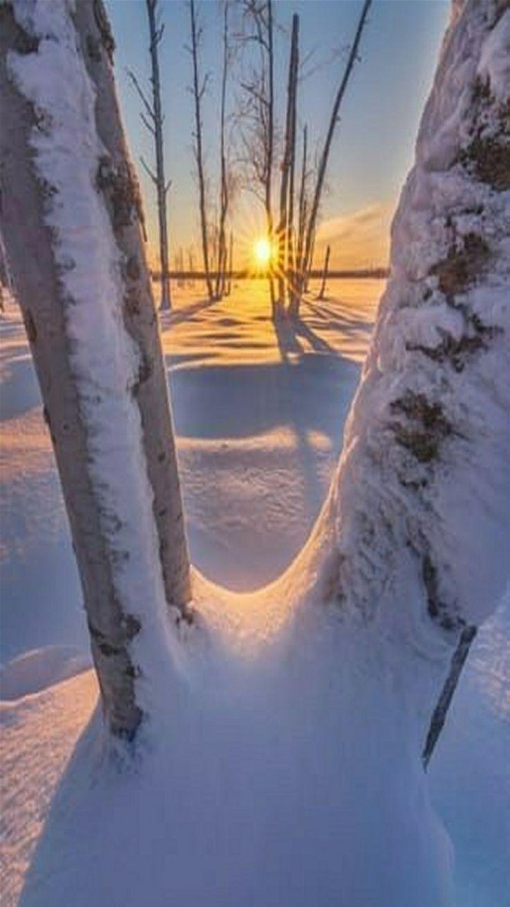 Winter sunrise in Sweden.
