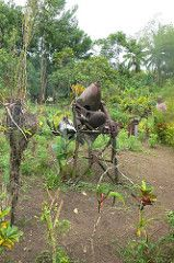 PNG Locals have used war relics as garden features in their backyards   http://www.pagahillestate.com/exploring-world-war-ii-relics/