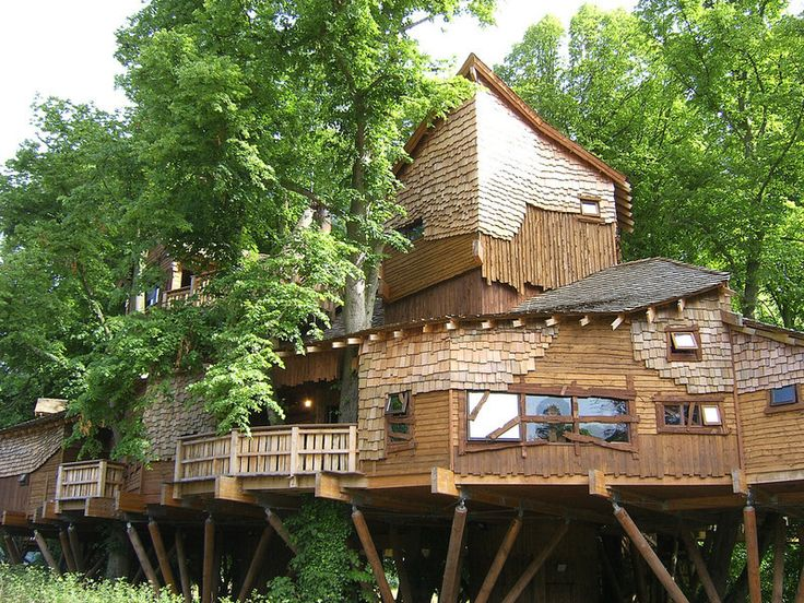 biggest treehouse in the world 2015 106 best tree house envy images on pinterest treehouses