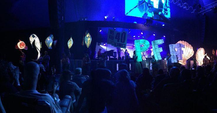 Enjoying the opening ceremony of the #portfairyfolkfestival #openingnight #bestseatsinthehouse #Rveethereyet by rveethereyet