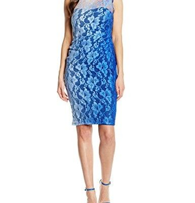 Gina-Bacconi-Damen-Kleid-Ombre-Stretch-Lace-0