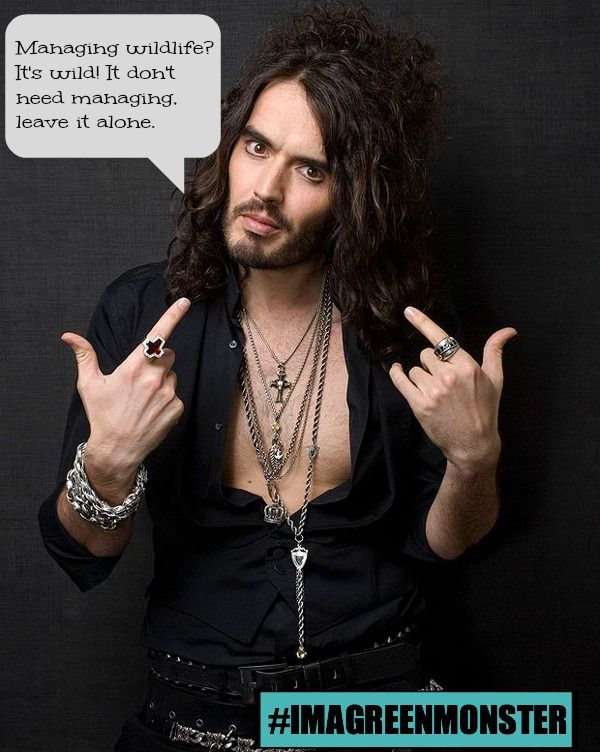 10 Quotey Quotes That Prove Russell Brand Has Mad Love For Animals!