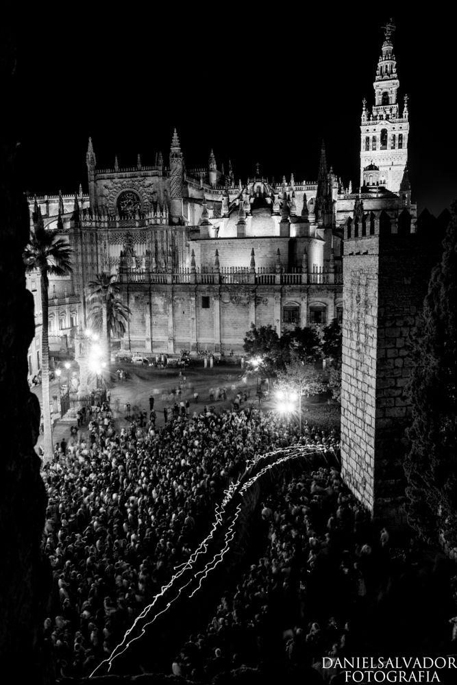 Fotografía de la Hermandad de los Estudiantes de vuelta al Rectorado de la Universidad. - Fotografía. Daniel Salvador-Almeida