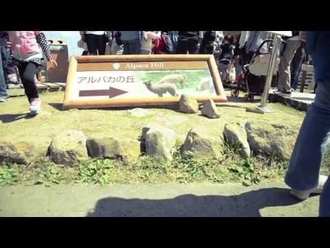 Nasu Animal Kingdom of Tochigi prefetcture, Japan