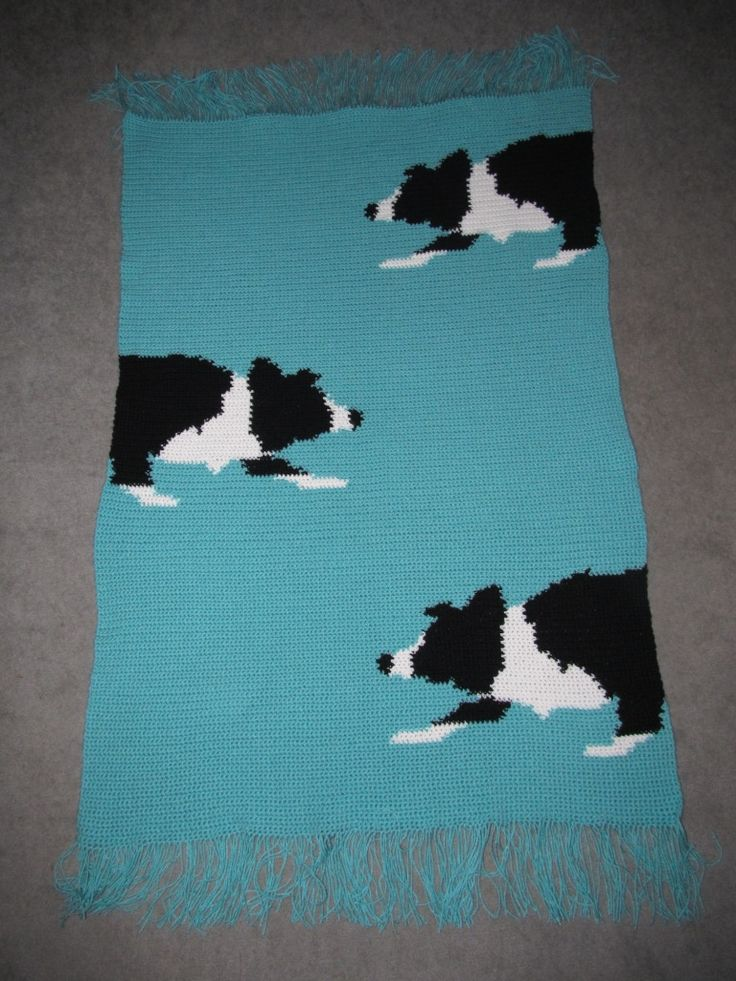 Black & white border collies stalking across a field of turquoise. Crochet afghan Design by Sonia Fadjic