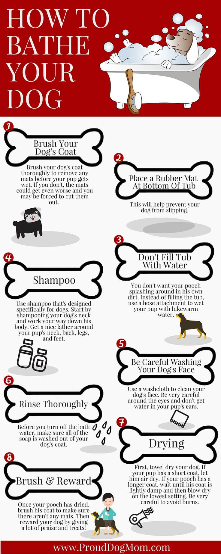 how to bathe your dog infographic 1 - Proud Dog Mom