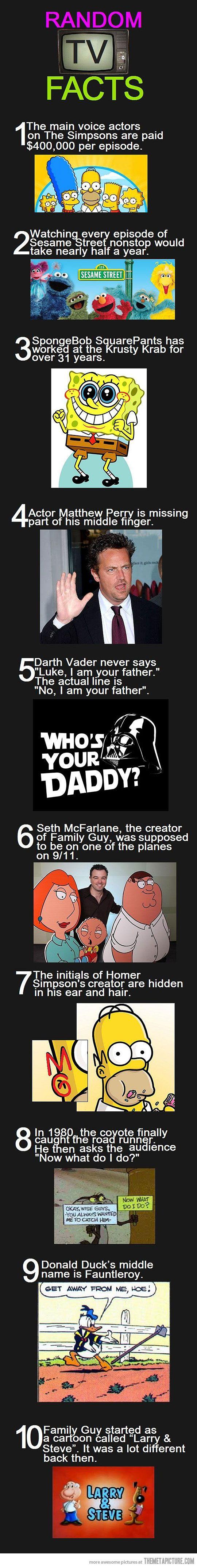 interesting tv facts