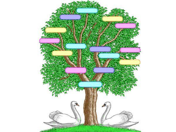 arbol genealogico template