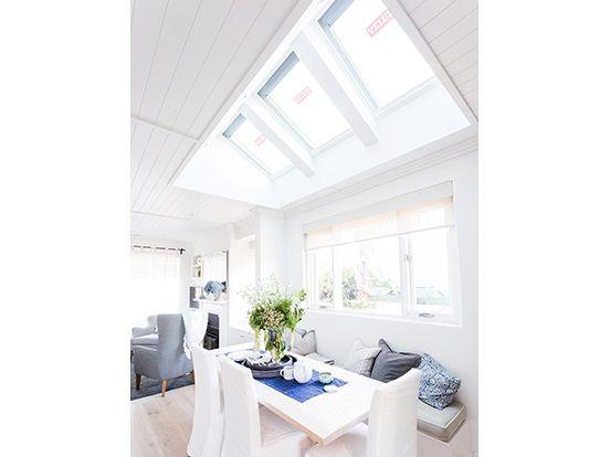 velux-skylights-reno-rumble