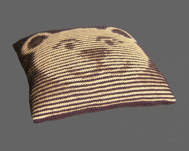 Teddy Bear Illusion Cushion