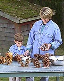 Pinecone Bird Feeder | Step-by-Step | DIY Craft How To's and Instructions| Martha Stewart