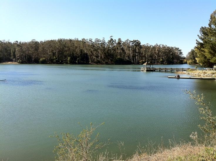 Laguna de Curauma